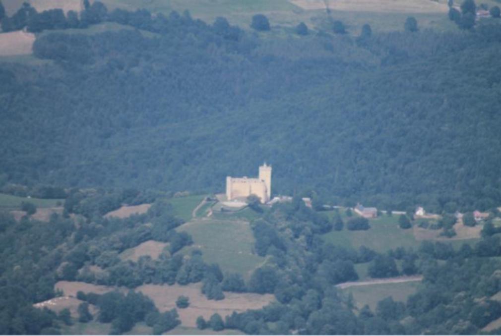 Vue aérienne assez lointaine d'un château à une tour au milieu des arbres de la vallée